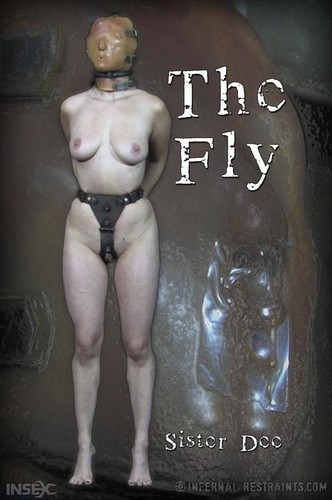 Sister Dee - The Fly