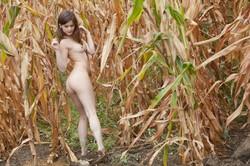Klarys Mulligan - Farm